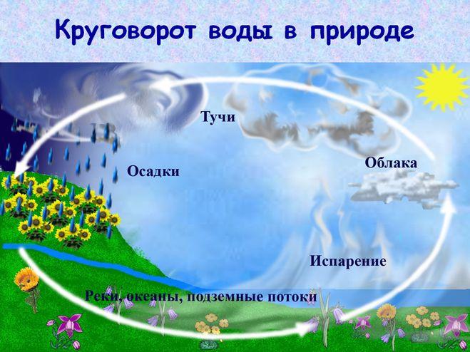 Круговорот воды в природе схема