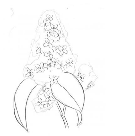 Рисунки карандашом аниме пары