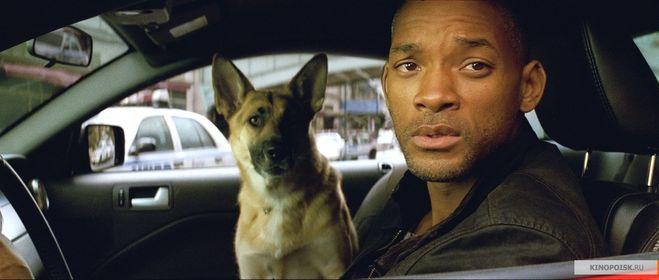 Уилл смит с собакой фильм джек чан полицейская история 4