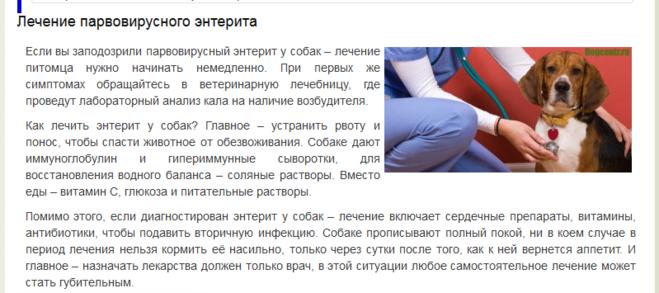 Энтероколит у кошек лечение - Cамые интересные факты обо всем на свете 5plustour.ru