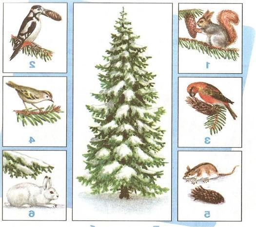 Картинки невидимые нити в осеннем лесу примеры