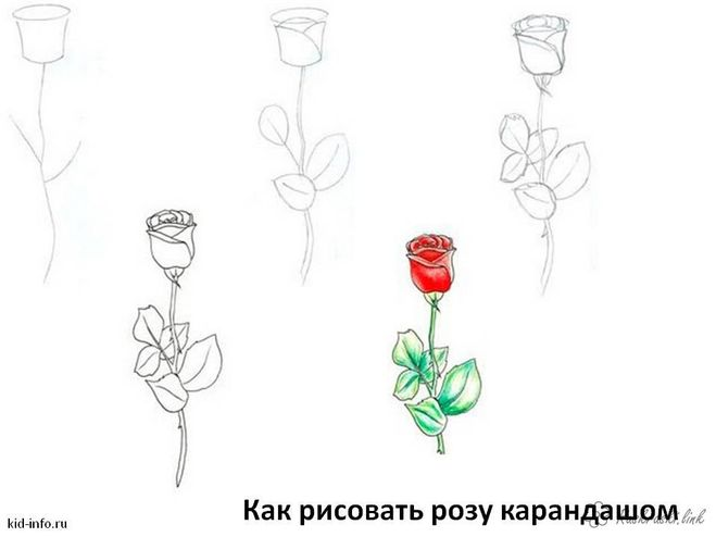 Как сделать розу из бумаги мастер класс 65