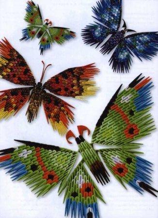 Вот таких милых бабочек можно