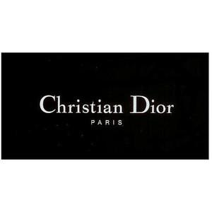 текст при наведении - Dior