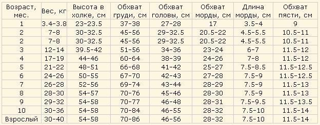 Вес хаски таблица