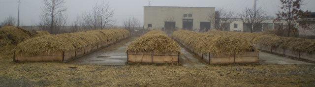 Промышленное выращивание червей 66