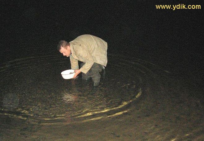 когда ловить раков ночью с фонариком