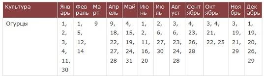 Лунный календарь на посадки огурцов