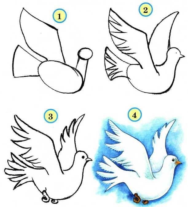 рисования летящего голубя: