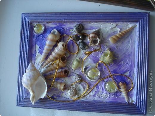 Картины из морских ракушек своими руками мастер класс 1