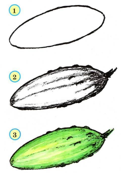 Как нарисовать овощи карандашом поэтапно