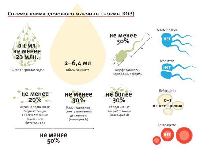 Требования к донору спермы