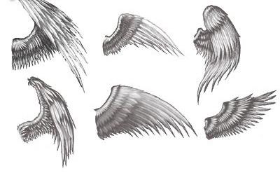 Как нарисовать крылья ангела карандашом поэтапно для начинающих