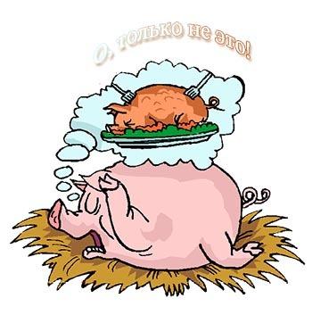 смешная картинка со свиньей