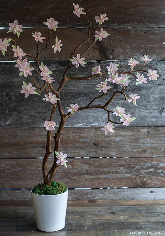 Как по японски цветок вишни