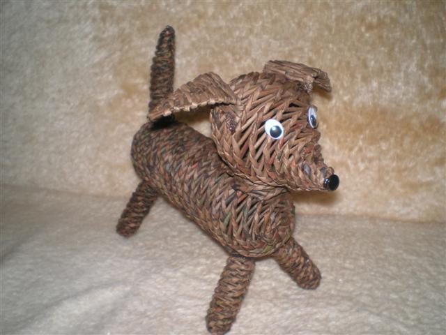 собака из капельницы