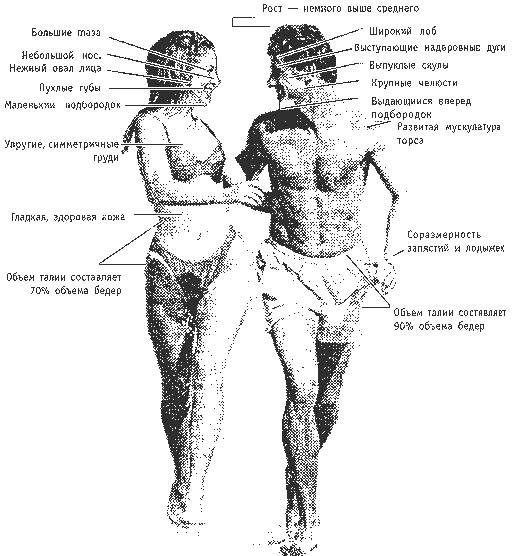 Сексуальность Рака