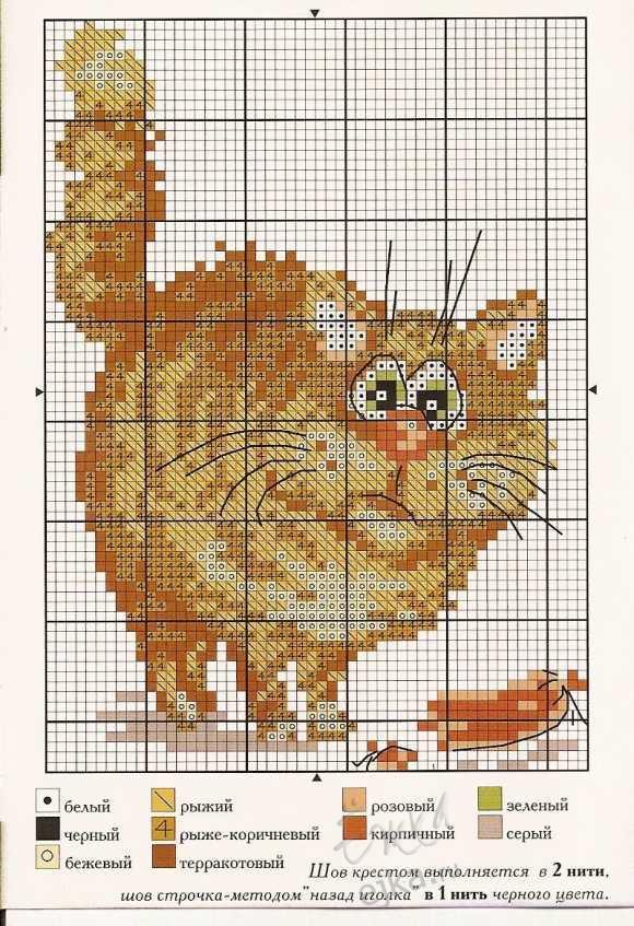 Кот с сосиской рисование по клеточкам