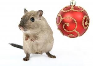 смешные картинкис грызунами по-новогоднему для настроения