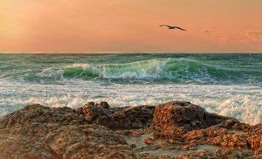 Температура воды Чёрного моря.