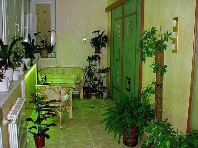 Применение в садоводстве железного купороса 97