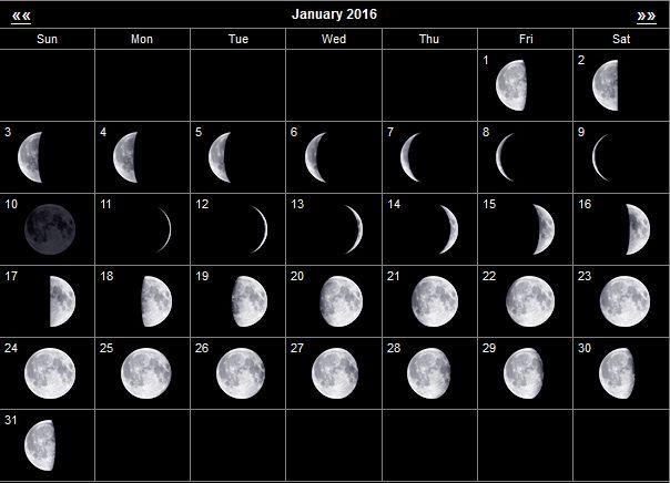 Год лошади с какого числа по восточному календарю