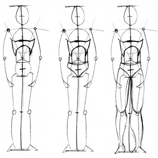 мужское и женское тело,