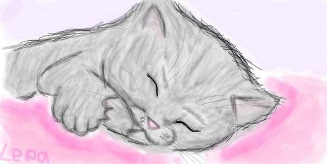 Как нарисовать кота который спит