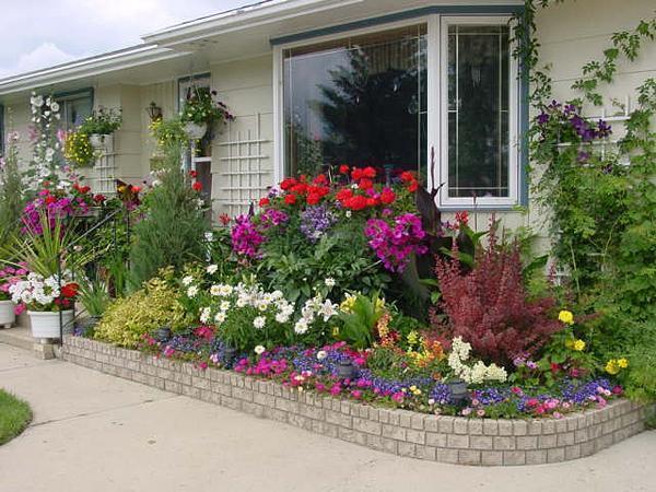Что сажать в мае? Месяц май для огородника 94