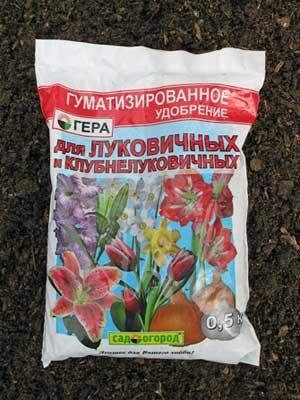 Какое удобрение нужно лилиям