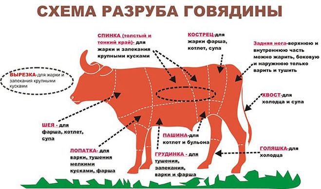 Схема разделки говядины