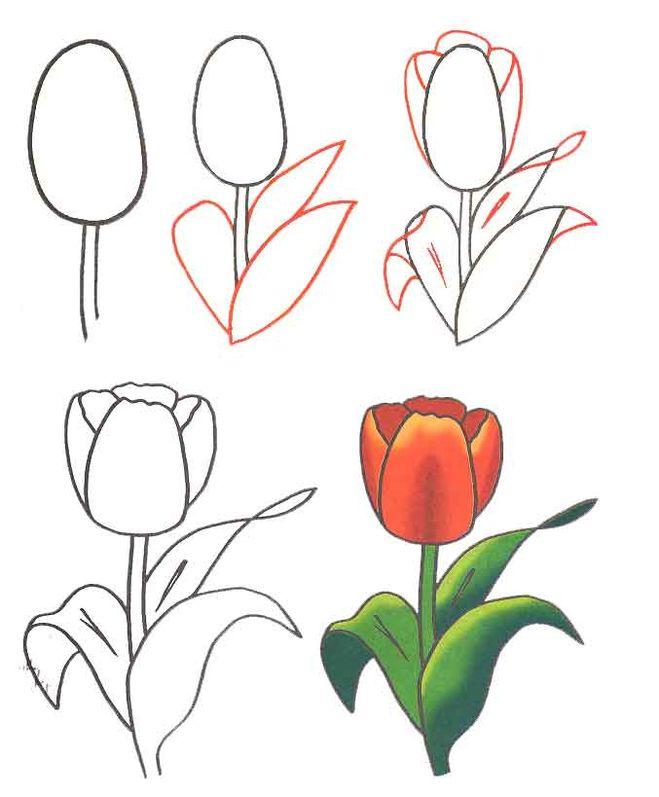Цветы на карандашах подарок