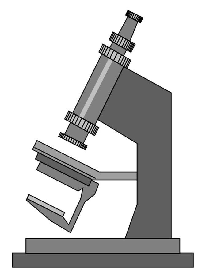 Как нарисовать микроскоп поэтапно картинки