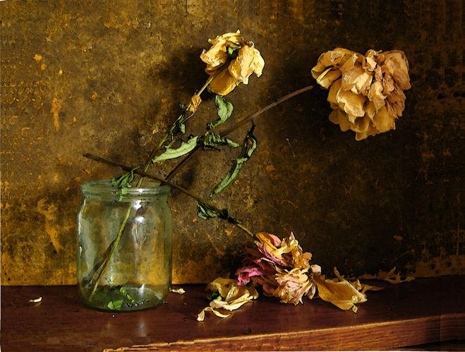 Почему нельзя дома держать сухие цветы