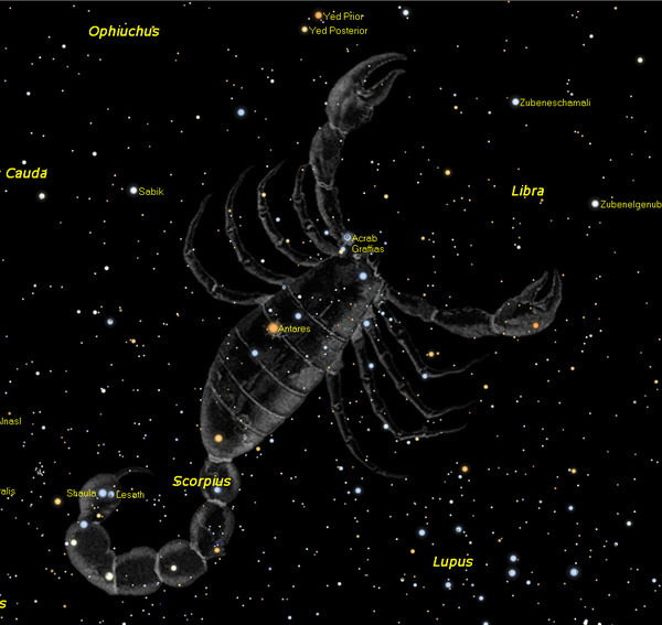какие звезды родились под знаком зодиака скорпион