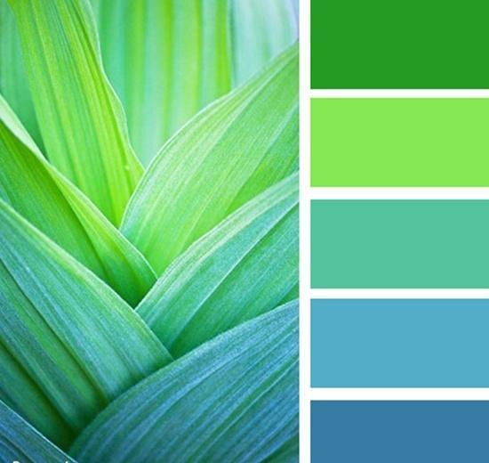 Цвет сочетающийся с зелёным