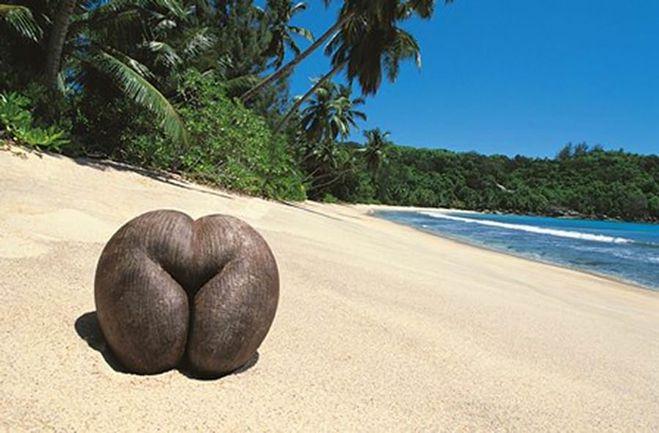 samiy-erotichniy-ostrov-v-mire