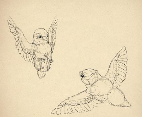 Строение рыбы рисунок для детей 1 класса