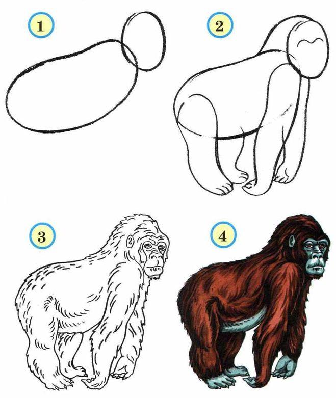 картинка как рисовать обезьяна