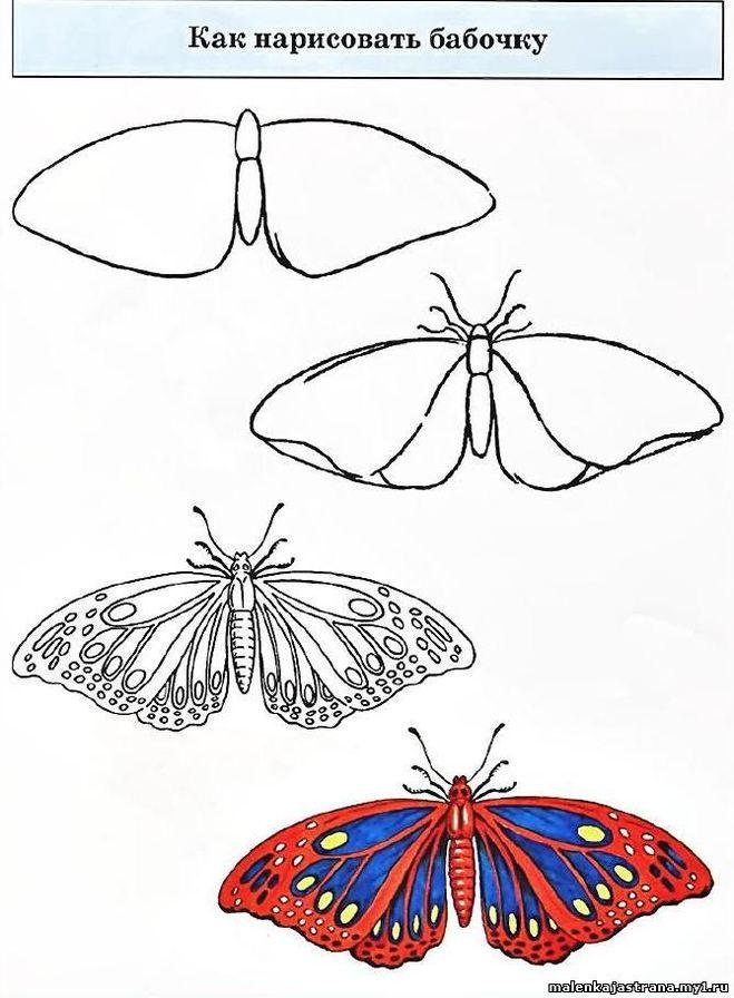 Нарисовать бабочку рисунки