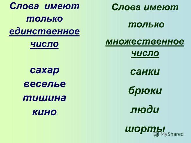 Слова которые употребляются в русском языке только во множетельном числе