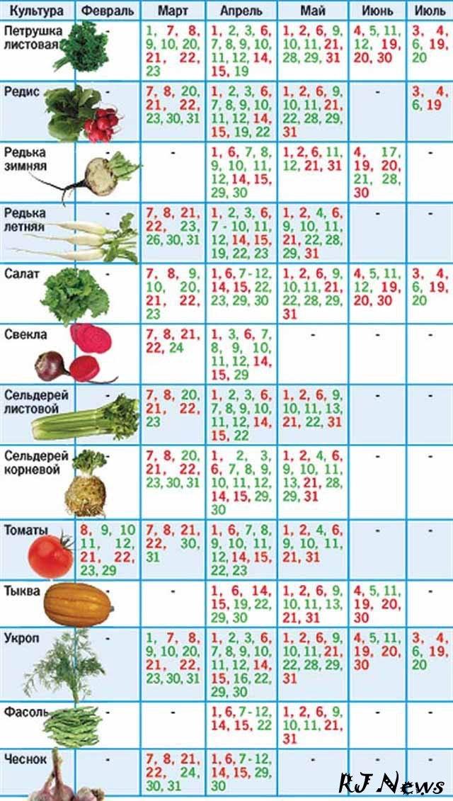 Лунный календарь огородника на 2016 год скачать