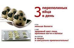 Как употреблять перепелиные яйца для потенции