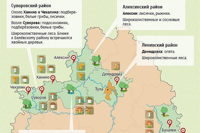 карта грибов тульской области