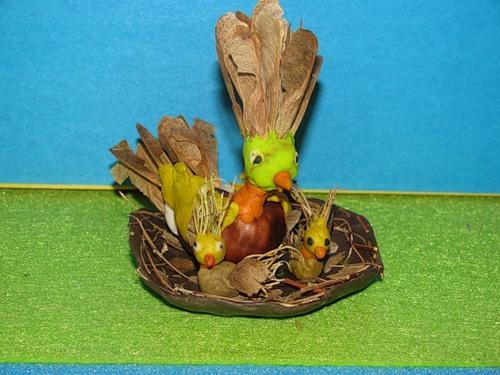 Птица из природного материала своими руками 17