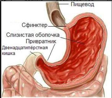 Мультиварка panasonic рецепты блюд
