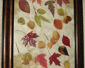 Коллаж своими руками из листьев 48