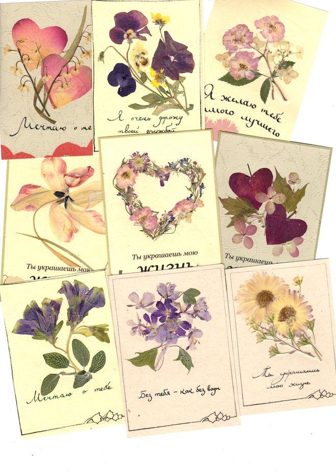 Открытки из настоящих цветов