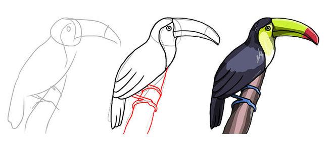 Раскраски Лебеди  Картинкираскраски для детей и взрослых