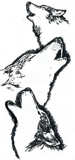 рисунок с мордой волка